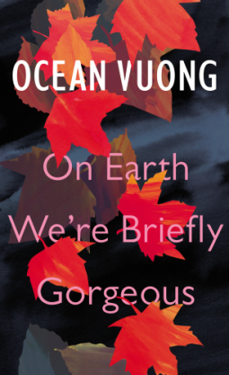 On Earth We're Briefly Gorgeous cover
