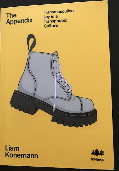 The Appendix cover: a yellow background with a silver Doc Martens boot with laces in the pink, blue and white colours of the trans flag